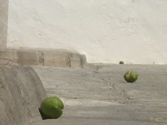 04 Vandalismo Castillo