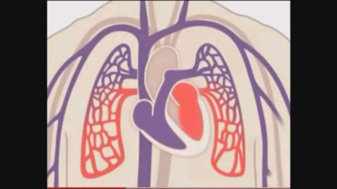 09 charla cardio