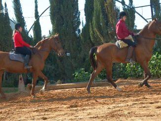 10 ruta a caballo