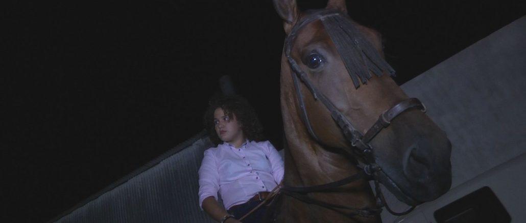 06 paseo a caballo