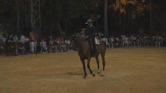 foto caballos