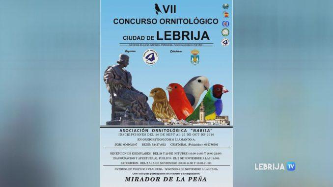ornitologico