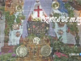 cruces17