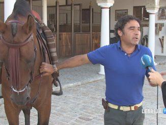 caballos1708