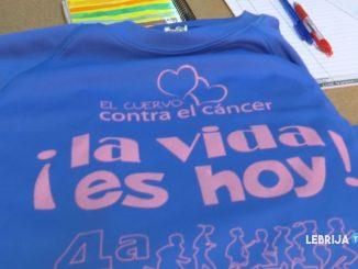 camisetas_0408