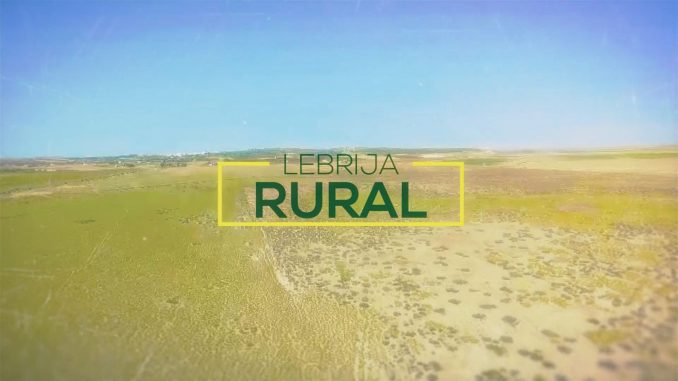 10 lebrija rural