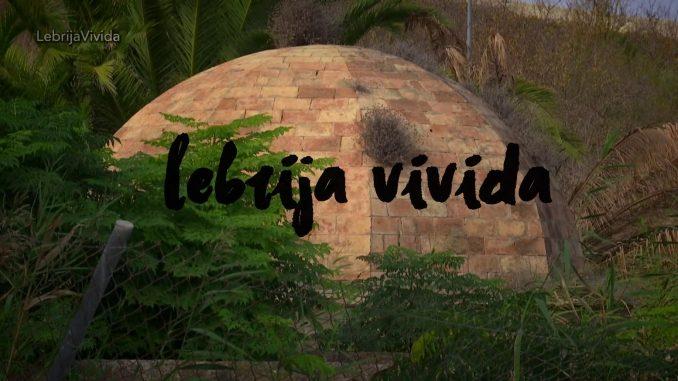 LEBRIJA VIVIDA 17-11-2019 PARTE 2.mpg_20191118172159